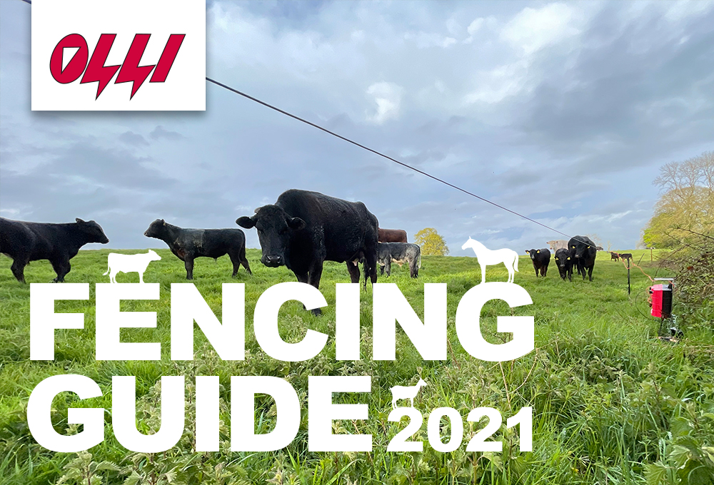 Fencing Guide 2021 Olli